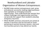 newfoundland and labrador organization of women entrepreneurs