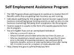 self employment assistance program