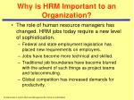 why is hrm important to an organization