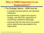why is hrm important to an organization1