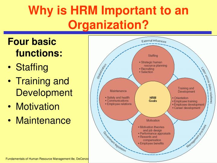 areas of knowledge of hrm Human resource (hr) management is a vital part of your company to be truly effective, your human resource team must be experts in a number of important areas.