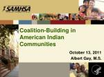 coalition building in american indian communities