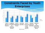 constraints faced by youth enterprises