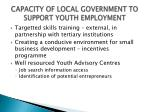 capacity of local government to support youth employment5