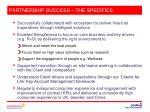 partnership success the specifics