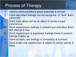 process of therapy