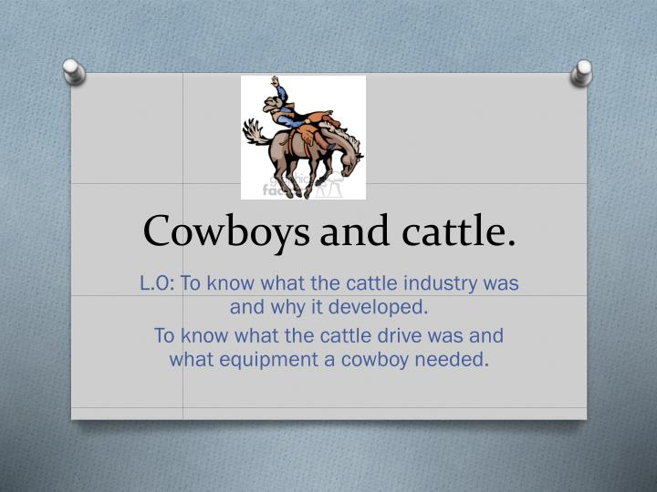 cowboys and cattle n.