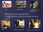 what do you want to do career electives you can choose for next year