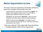 market segmentation by size