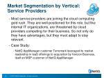 market segmentation by vertical service providers
