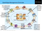 openedge management overview