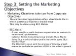 step 3 setting the marketing objectives