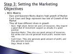 step 3 setting the marketing objectives2