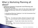 what is marketing planning all about1