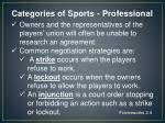 categories of sports professional3