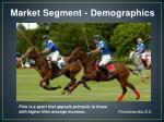 market segment demographics1