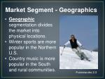 market segment geographics