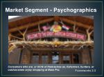 market segment psychographics2