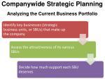 companywide strategic planning analyzing the current business portfolio1