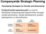 companywide strategic planning developing strategies for growth and downsizing