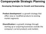 companywide strategic planning developing strategies for growth and downsizing2