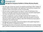 principle 12 manage the enterprise portfolio to achieve business results