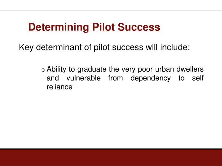 Determining Pilot Success