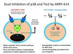 dual inhibition of p38 and tie2 by arry 614