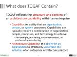 what does togaf contain