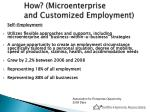 how microenterprise and customized employment