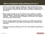 what is peripheral artery disease p a d