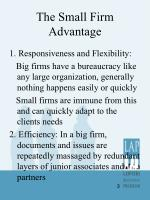 the small firm advantage