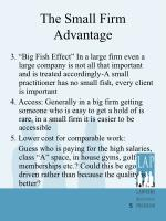 the small firm advantage2