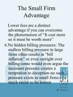 the small firm advantage3