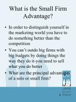 what is the small firm advantage