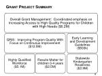 grant project summary