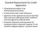 essential requirements for credit application