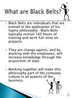 what are black belts
