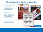 digital marketing database marketing