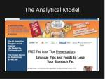 the analytical model