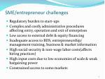 sme entrepreneur challenges