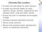 domain site leaders