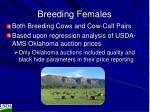 breeding females