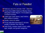 fats or feedlot