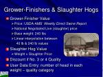 grower finishers slaughter hogs
