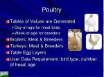 poultry2