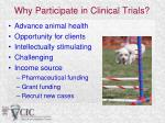 why participate in clinical trials