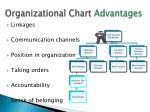 organizational chart advantages