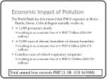 economic impact of pollution