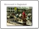 microcredit in bagladesh